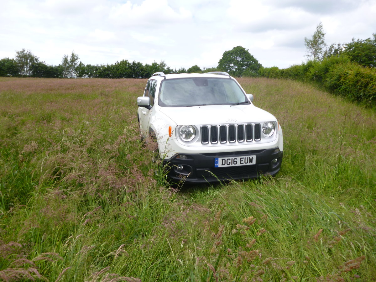 2016 Jeep Renegade Auto Navigation 4 WD Diesel For Sale (picture 4 of 6)