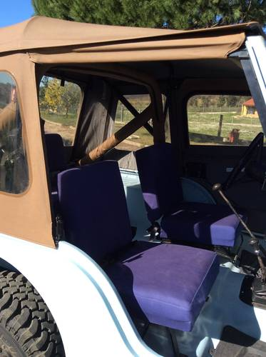 1978 Jeep CJ5 4.2 liter For Sale (picture 6 of 6)