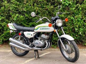 Rare Kawasaki S1A 250cc 1973  For Sale