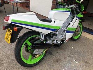 Stunning Kawasaki KR1