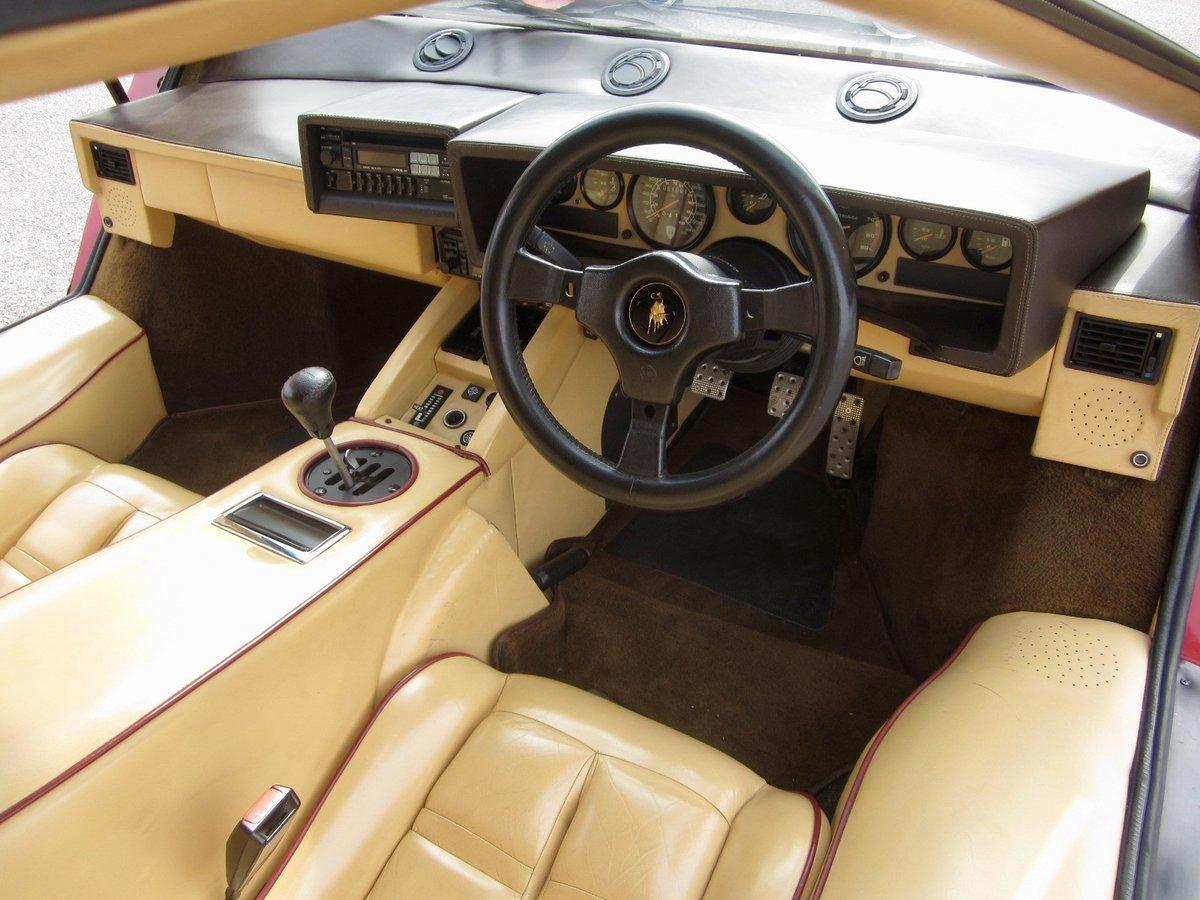 1988.5 Lamborghini Countach For Sale (picture 5 of 6)