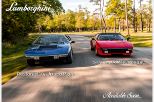 1988 Lamborghini Jalpa Rare 1 of 410 made Red(~)Tan $obo