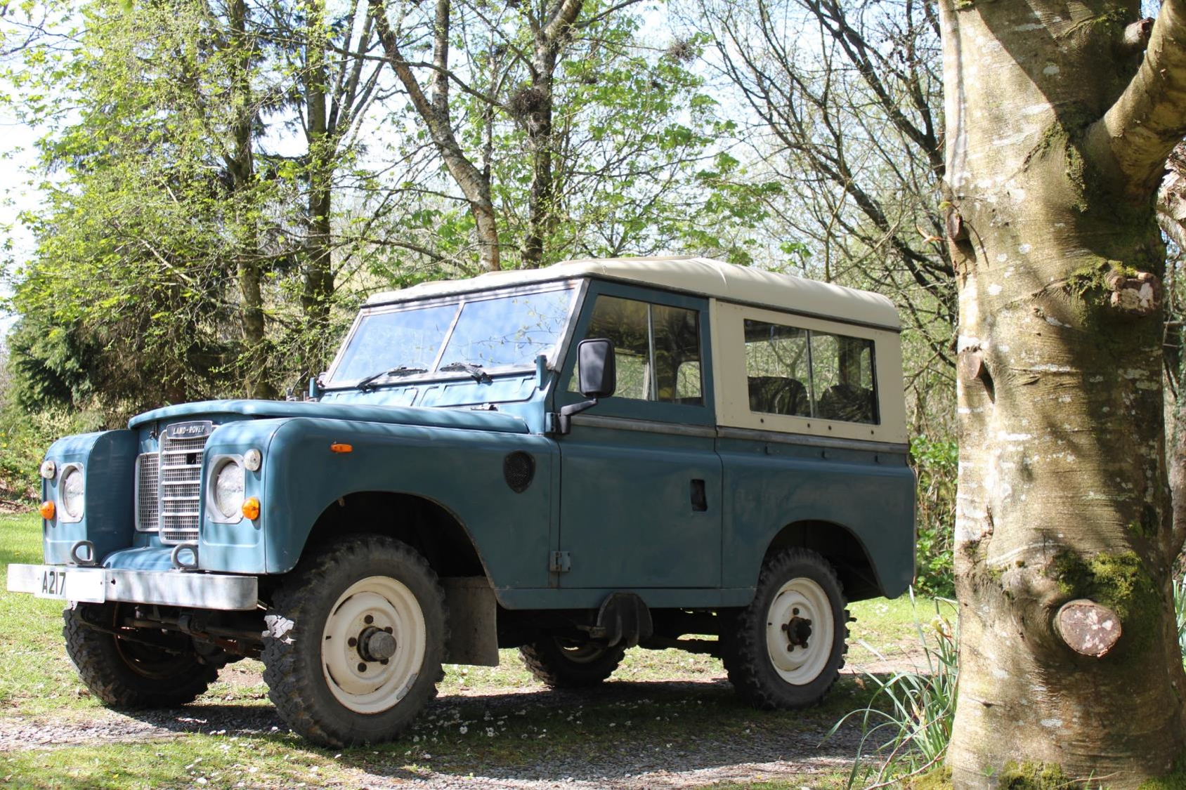 1984 Land Rover Series III petrol For Sale (picture 2 of 6)