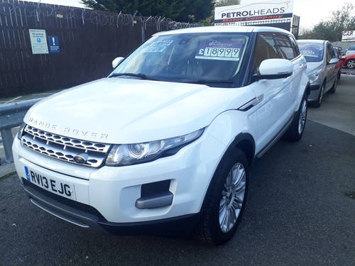 2013 2003 EVOQUE  PURE TEC  1 OWNER FULL HISTORY For Sale (picture 2 of 4)