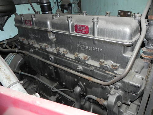 1953 Leyland Super Hippo *** BARN STORED MANY YEARS *** For Sale (picture 3 of 6)