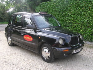 2005 London Taxis International TXII slver edt  For Sale