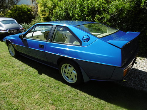 1992 ECLAT/EXCEL Stunning near new and original . SOLD (picture 6 of 6)