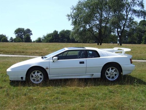 "1993 LOTUS ESPRIT TURBO SE ""HIGH WING"" For Sale (picture 6 of 6)"