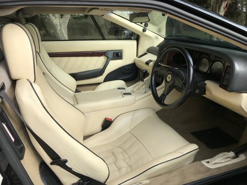 1995 Lotus Esprit S4S For Sale (picture 5 of 6)