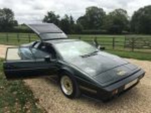 1984 RARE  EX  LOTUS  CHAIRMAN 31000  MILES  FSH   For Sale (picture 1 of 6)