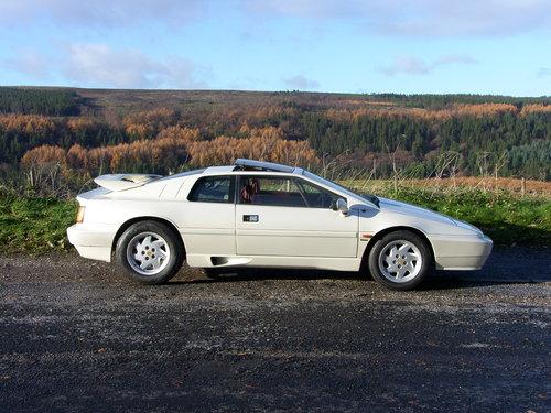 1989 Lotus Esprit Turbo SOLD (picture 1 of 6)