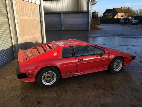 reputable site on wholesale best value 1984 Lotus Turbo Esprit S3 Restoration Project SOLD | Car ...