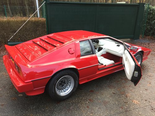 1981 Lotus Esprit S2.2 For Sale (picture 2 of 6)
