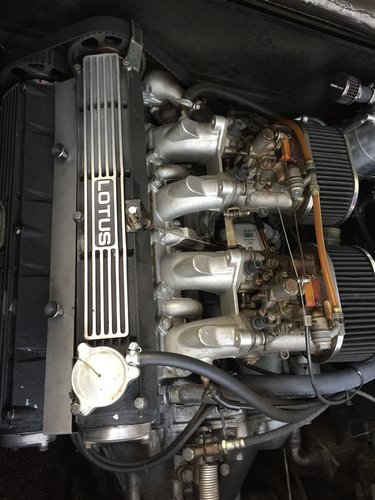 1981 Lotus Esprit S2.2 For Sale (picture 6 of 6)