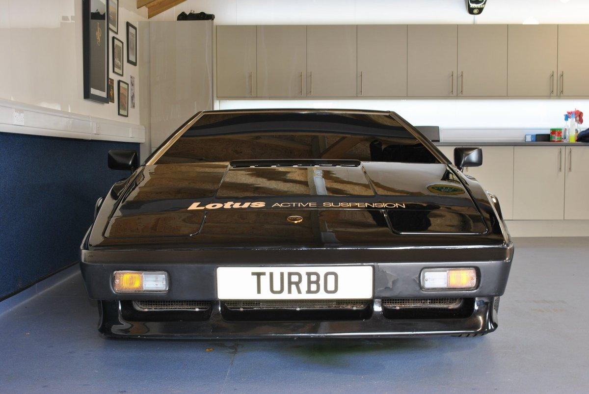 1980 Lotus Esprit Dry Sump Active Suspension / 001 Essex For Sale (picture 2 of 4)