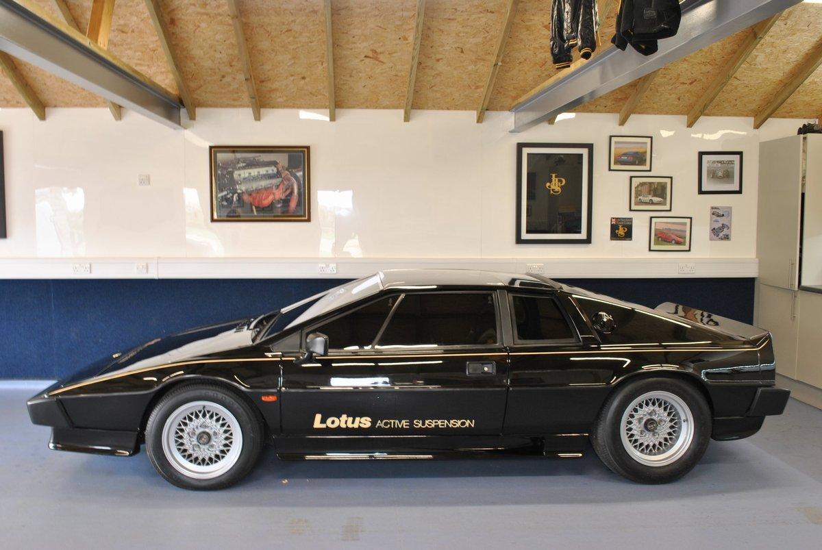 1980 Lotus Esprit Dry Sump Active Suspension / 001 Essex For Sale (picture 3 of 4)