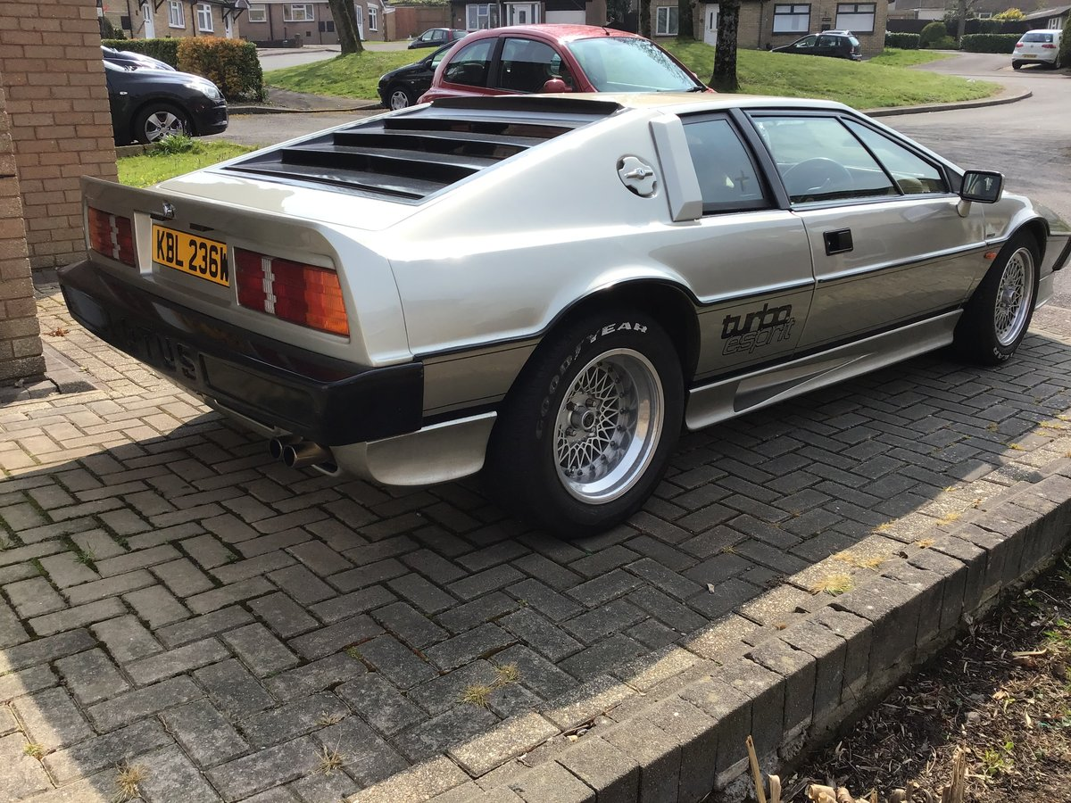 1981 DRY SUMP TURBO ESPRIT SOLD (picture 1 of 6)