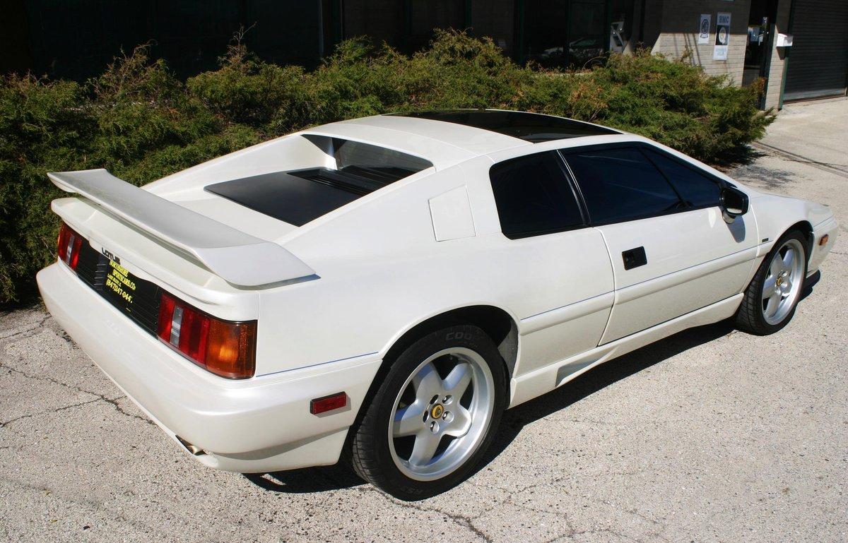 1988 Lotus Esprit Commemorative  For Sale (picture 2 of 6)
