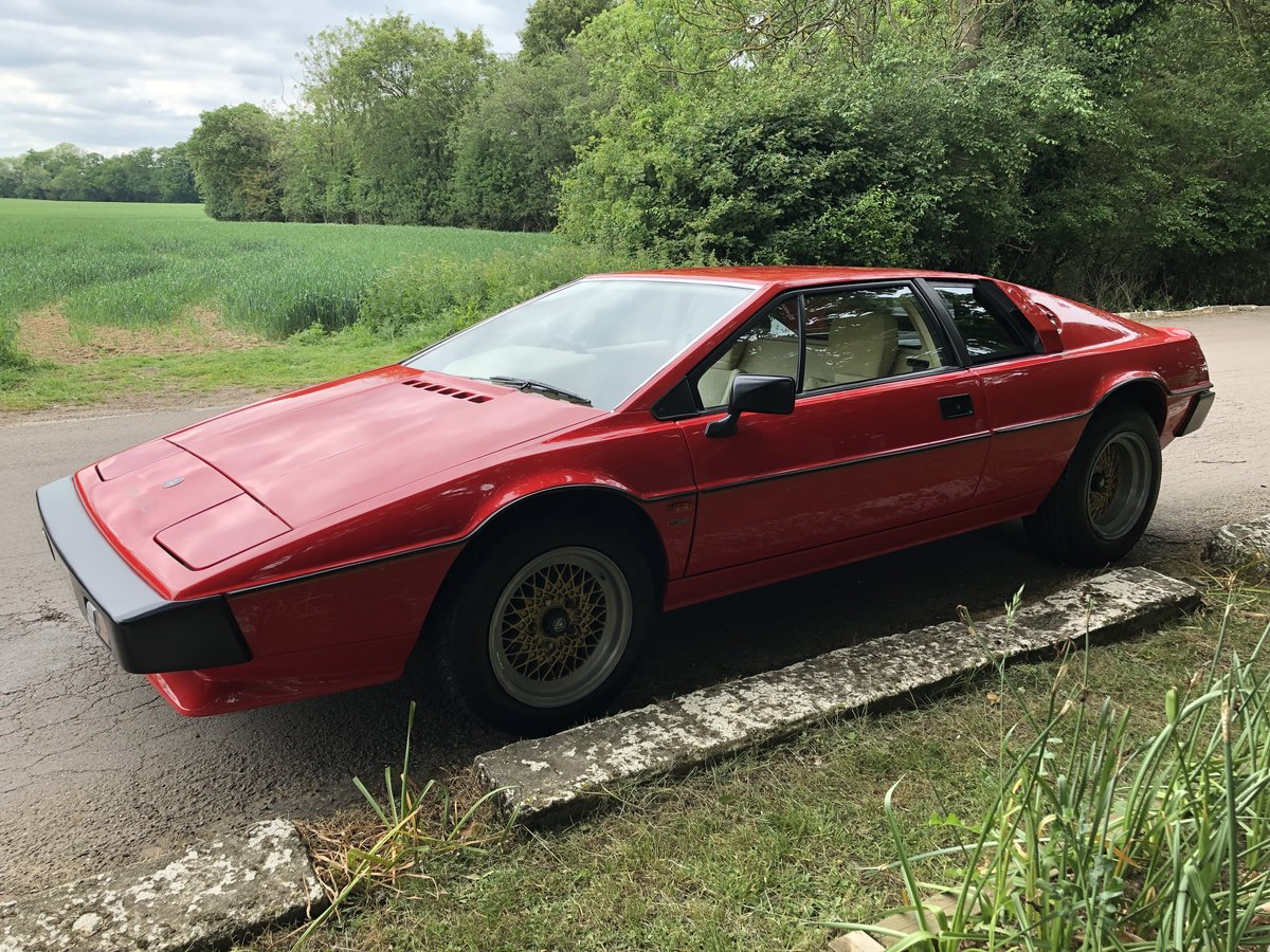 1983 Lotus Esprit S3 For Sale (picture 3 of 6)