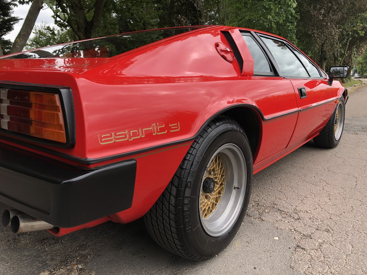 1983 Lotus Esprit S3 For Sale (picture 4 of 6)