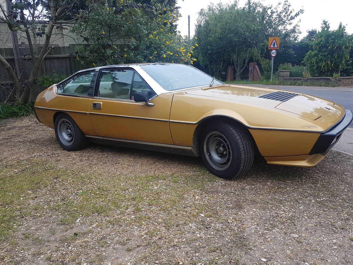 1979 Lotus Eclat SOLD (picture 1 of 6)