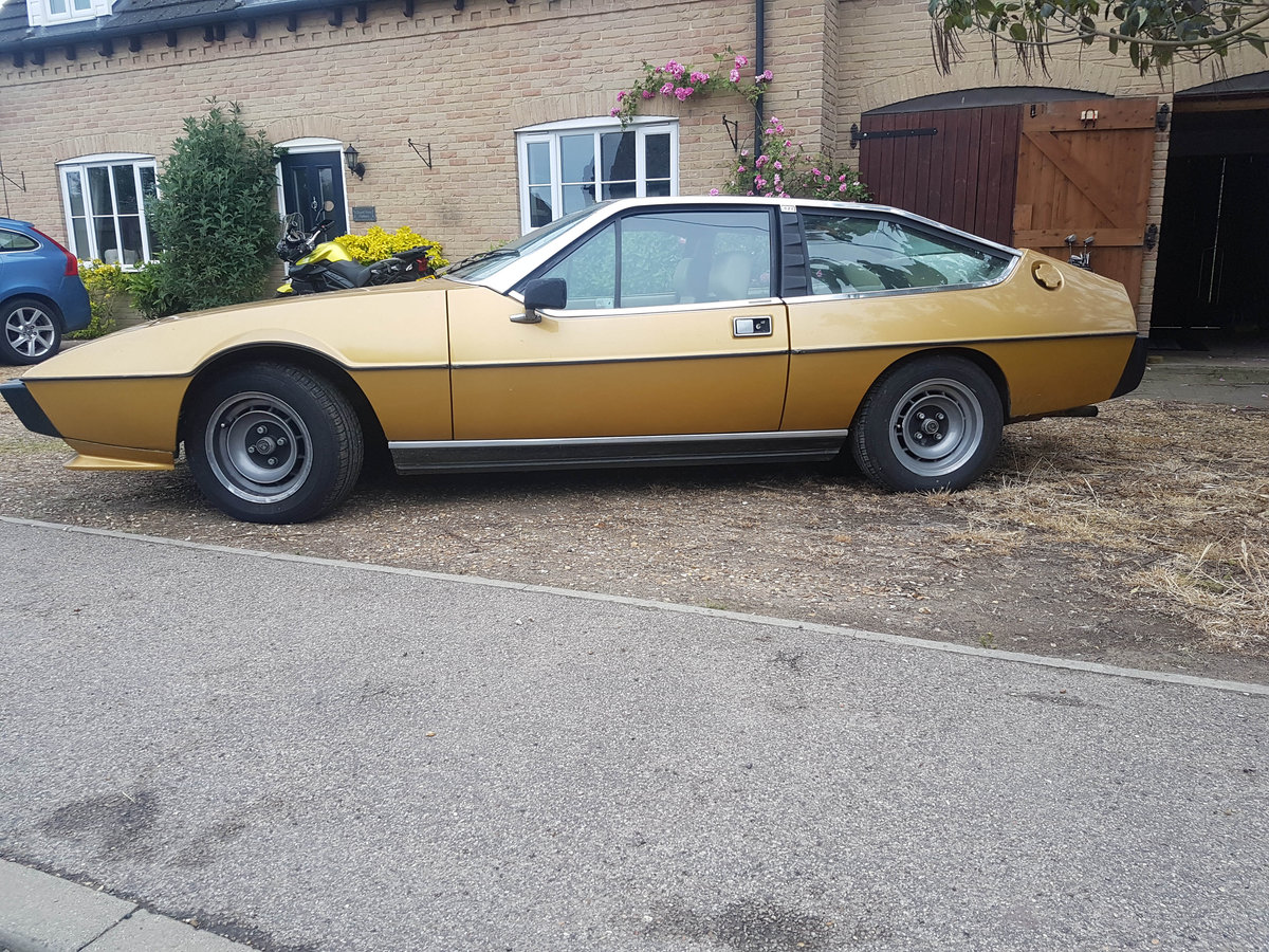 1979 Lotus Eclat SOLD (picture 3 of 6)