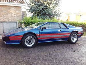 1981 Lotus Esprit Essex Turbo For Sale by Auction