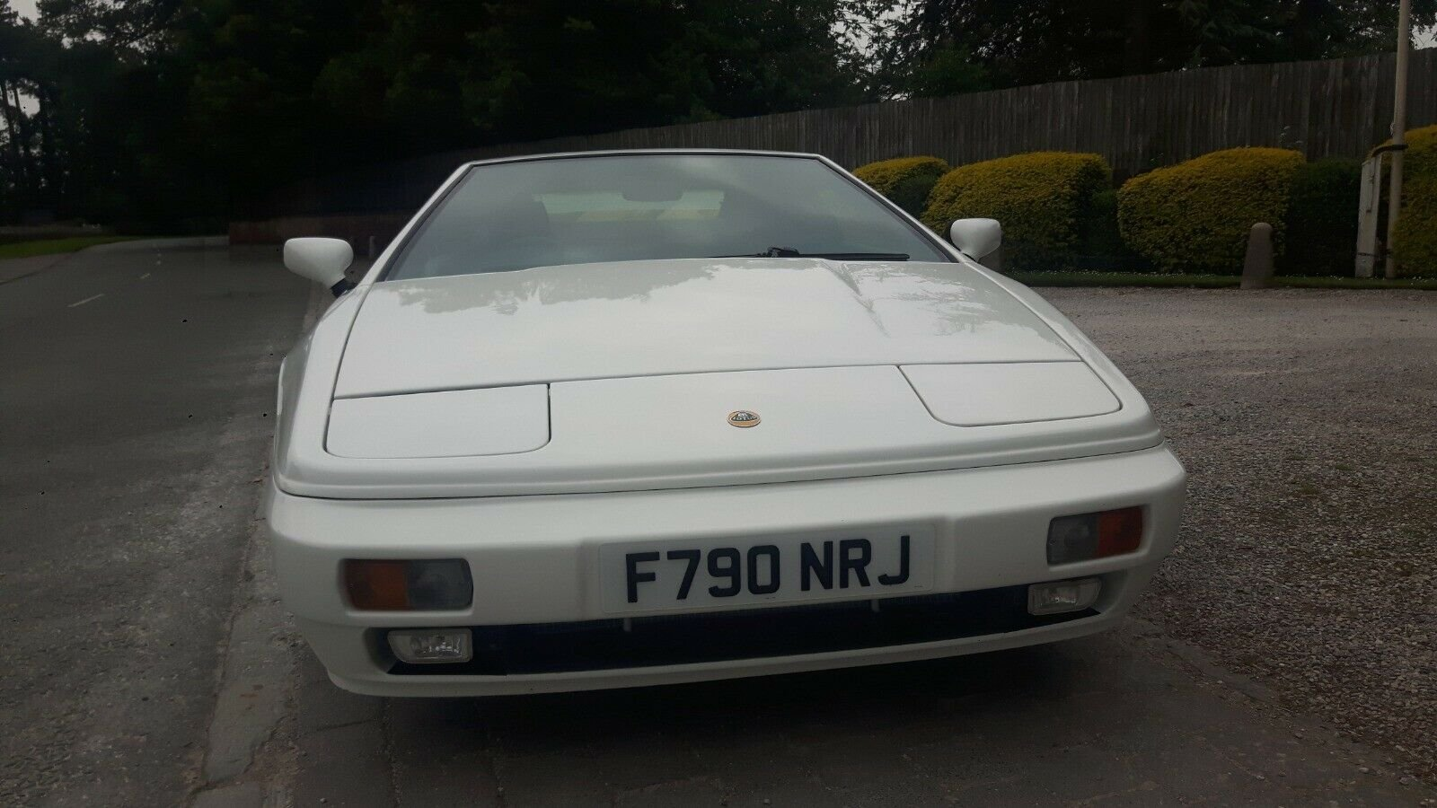 1988 Stevens Lotus Esprit Turbo Limited Edition. For Sale (picture 6 of 6)