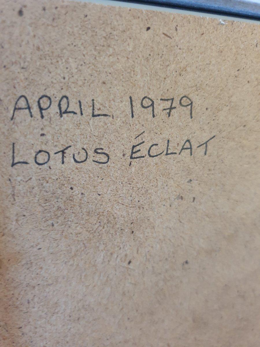 1979 Lotus Eclat Advert Original  For Sale (picture 2 of 2)
