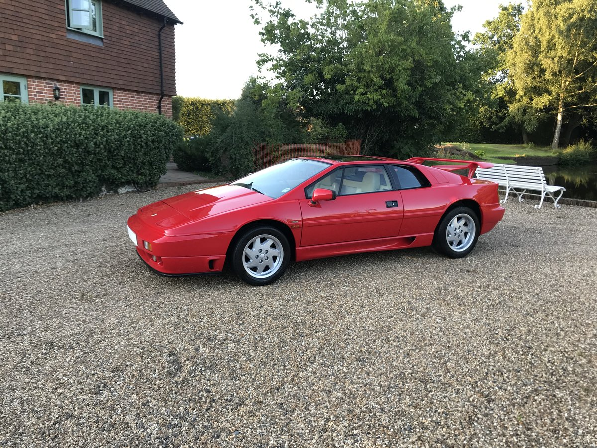 1991 Lotus Esprit turbo se High Wing For Sale (picture 1 of 6)