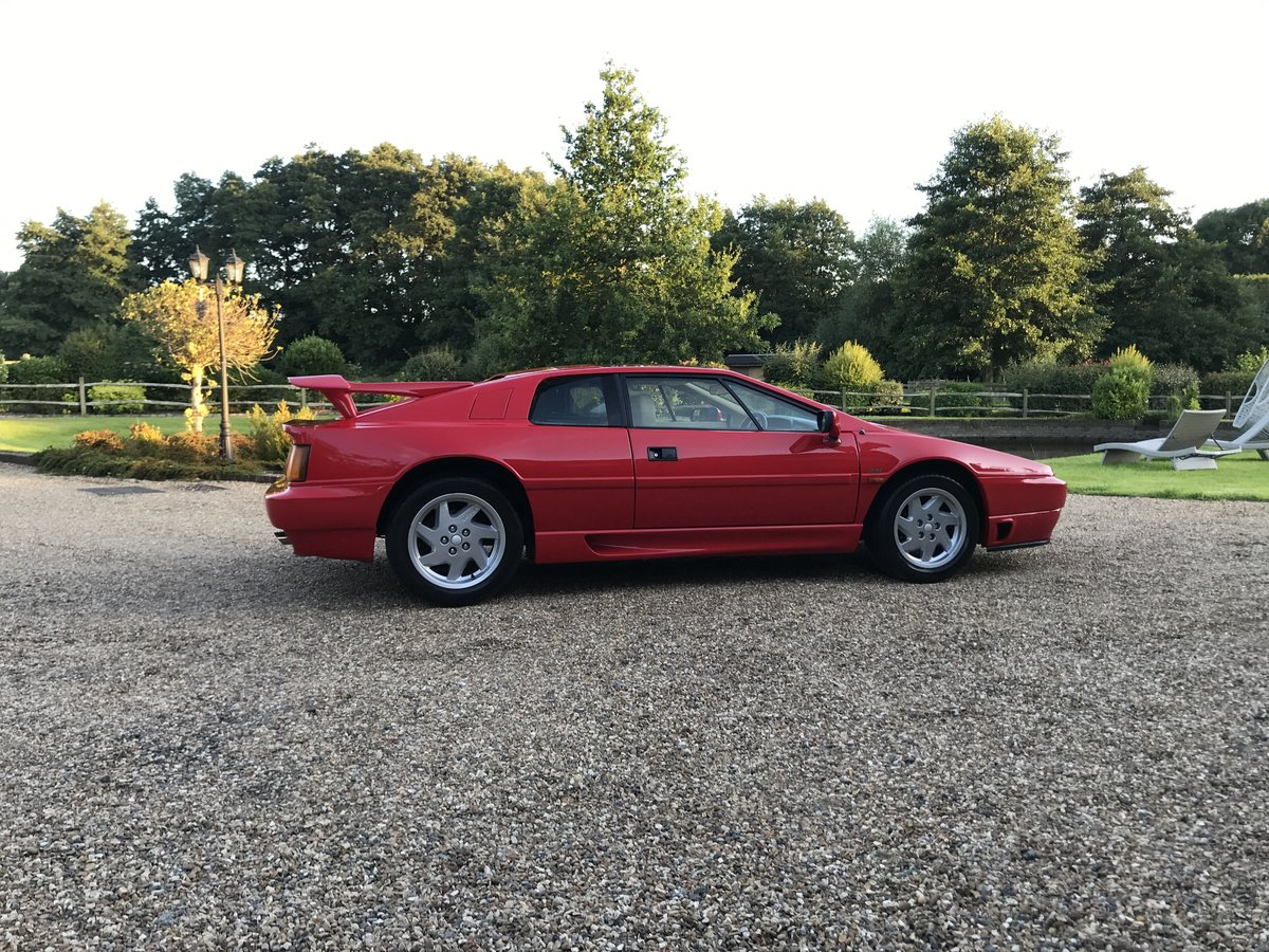 1991 Lotus Esprit turbo se High Wing For Sale (picture 2 of 6)