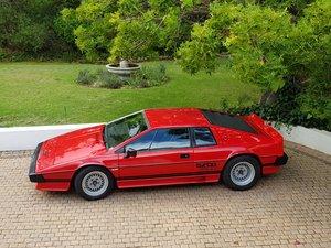 1981 Lotus Esprit Turbo - Dry Sump