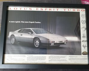 1987 Lotus Esprit Turbo Advert Original  For Sale