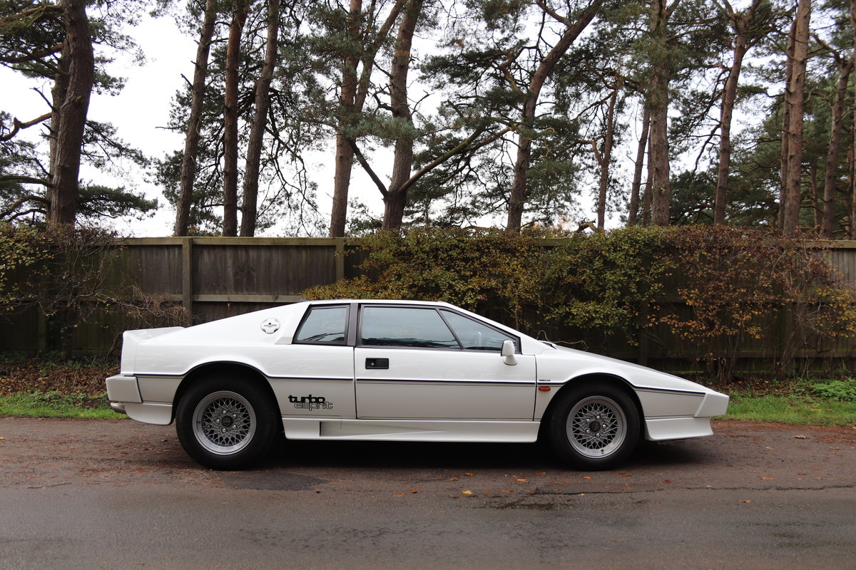 1986 Lotus Esprit Turbo - 1985 Motor Show Car For Sale (picture 7 of 23)
