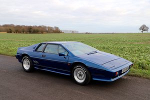 Lotus Esprit Turbo, 1985. Essex Blue metallic. 33,000 miles