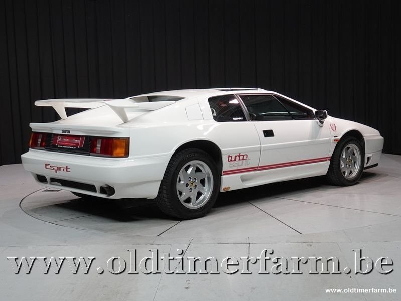1992 Lotus Esprit Turbo Highwing Chargecooled '92 For Sale (picture 2 of 6)