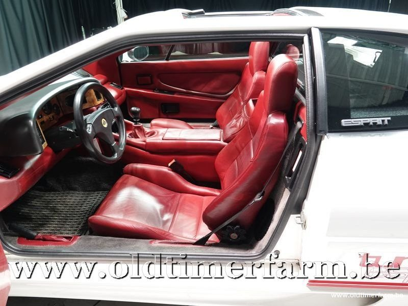 1992 Lotus Esprit Turbo Highwing Chargecooled '92 For Sale (picture 4 of 6)