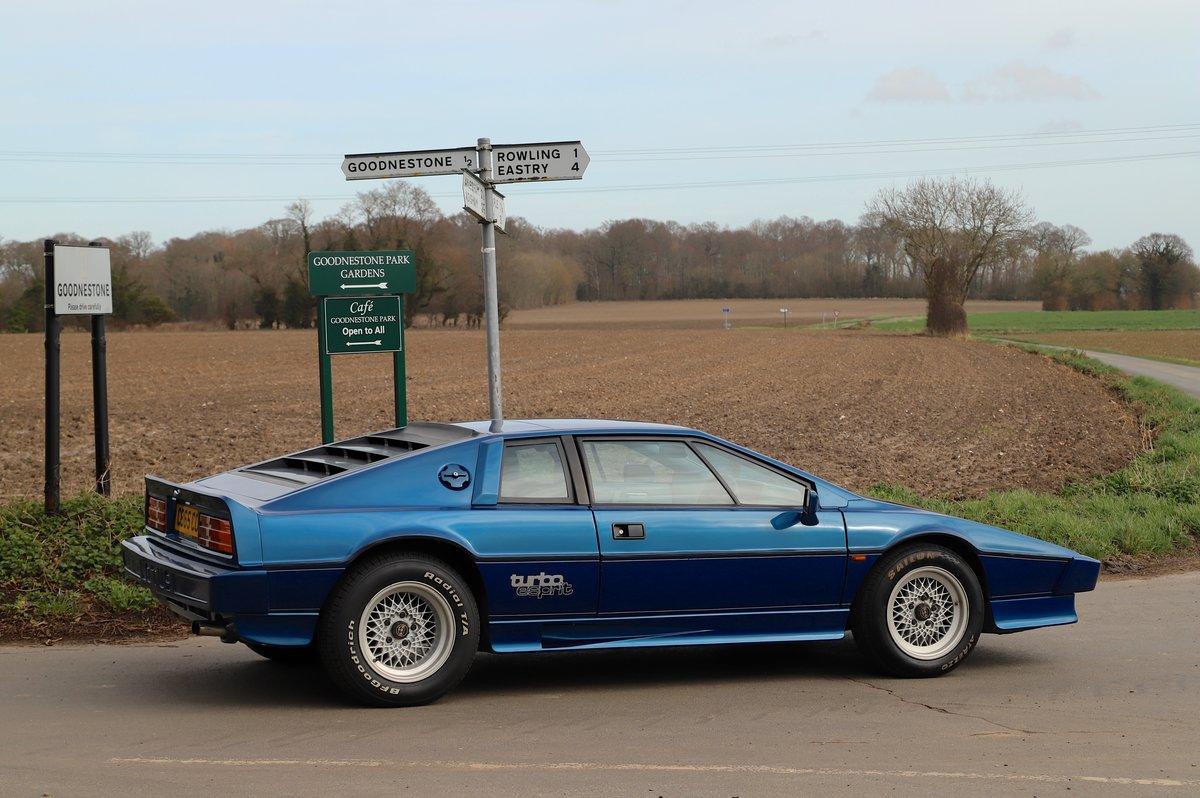 Lotus Esprit Turbo, 1986. Essex Blue metallic  For Sale (picture 3 of 6)