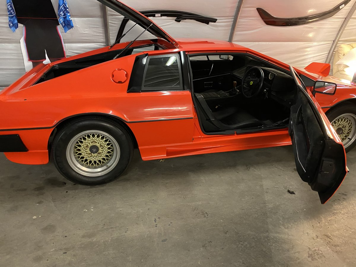 1980 Lotus Esprit s2 For Sale (picture 4 of 6)
