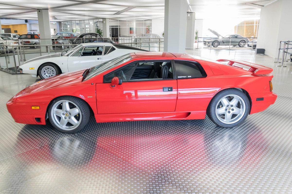 Lotus Esprit 1990 For Sale (picture 2 of 6)