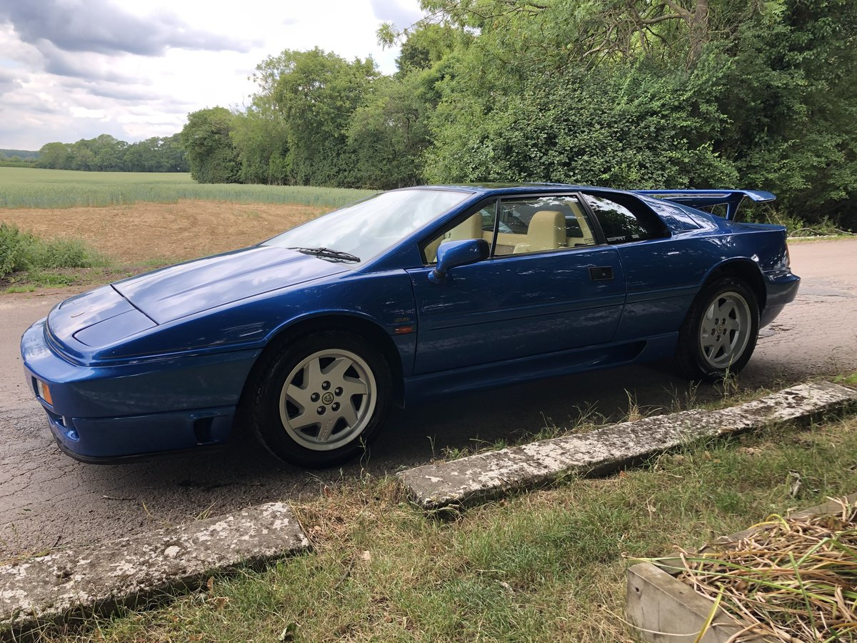 1992 Lotus Esprit Turbo SE Highwing For Sale (picture 4 of 6)