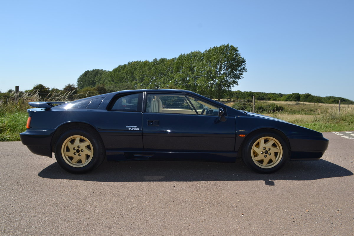 1988 Lotus Esprit Turbo 2.2 (X180) For Sale (picture 5 of 6)