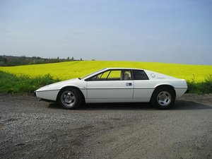 Matching numbers and factory colour Lotus Esprit