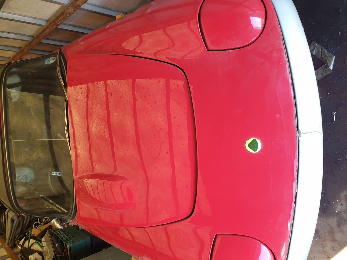 Picture of 1968 Lotus Elan convertible For Sale