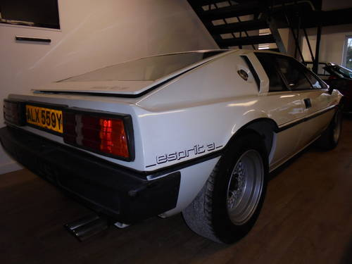 1982 Lotus Esprit S3 ** 23K MILES *ONLY 2 FORMER KEEPERS *DR For Sale (picture 4 of 6)