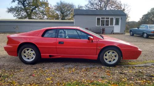 1989 Lotus Esprit X180 For Sale (picture 5 of 6)