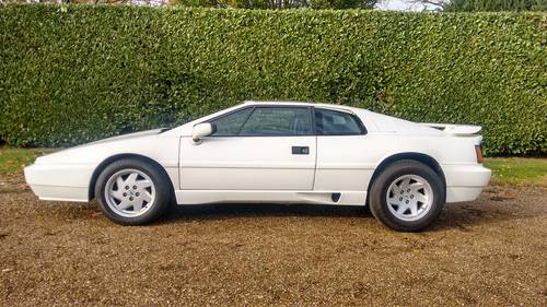 1988 Lotus Esprit X180 For Sale (picture 2 of 6)