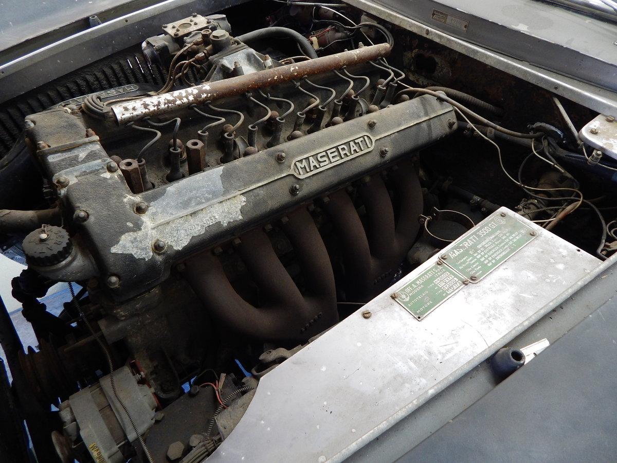 1962 Maserati 3500gti For Sale (picture 4 of 4)