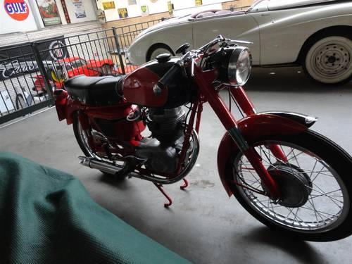 Several Maserati Classic Bikes For Sale (picture 4 of 6)