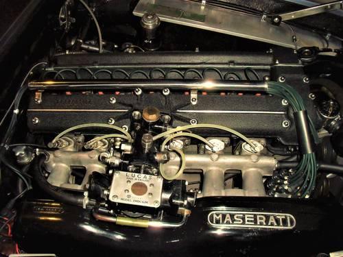 1963 beautifull  Maserati 3500 gti sebring For Sale (picture 3 of 6)